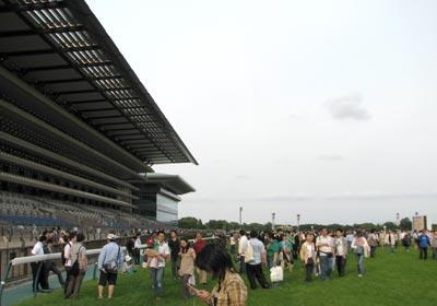 内側の芝生